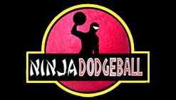 Ninja Dodgeball